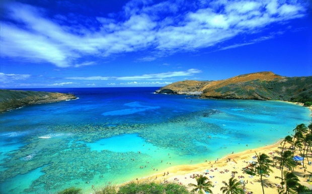 sea-beach-sky-palm-mountains-tropics-hanauma-oahu-hawaii-bay-usanature